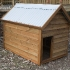 medium-dog-kennel-merbau-stained-treated-pine